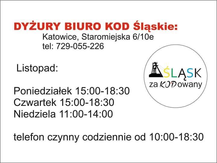 dyzury_listopad